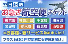 お急ぎ航空便チケット